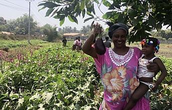 TİKA'dan Gine'de kadınlar için tarım istihdamı