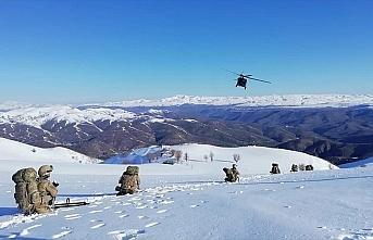 İçişleri Bakanlığı: Bingöl'de 'Kapan-9 Karer...