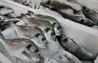 Balık tüketim kampanyasıyla zincir marketlerde...