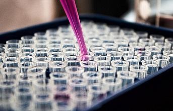 Avrupa İlaç Ajansı: Kovid-19 aşısının üretimi...