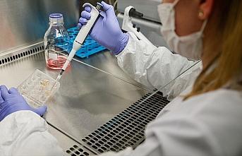 Hepatit C ilaçlarının Kovid-19 tedavisinde potansiyel adaylar olduğu belirlendi