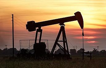 Libya ordu sözcüsü Kununu: Libya petrollerinin...