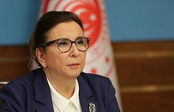 Ticaret Bakanı Pekcan: Normalleşme süreciyle ekonomik...