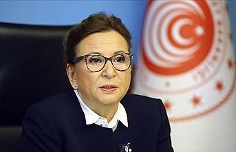 Ticaret Bakanı Pekcan: Türk Eximbank 678 milyon...