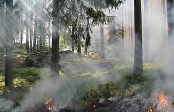 TikTok için hokkabazlık yaparken orman yangını...