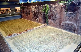 Amasya'da 1800 yıllık elma ağacı motifli mozaik müzede izlenime sunuldu