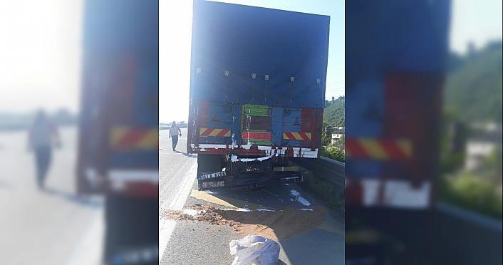 Anadolu Otoyolu'nda iki kamyon çarpıştı: 5 yaralı