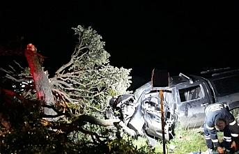 Bolu'da ağaca çarpan kamyonetteki 4 kişi yaralandı