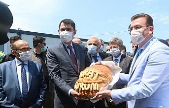 Çevre ve Şehircilik Bakanı Kurum, Trabzon'da incelemelerde...