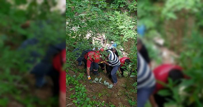 Ordu'da tarım aracının uçuruma yuvarlandığı kazada sürücü yaralandı