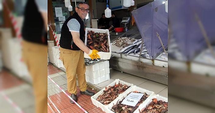 Sinop'ta iskorpit balığının kilogramı 55 liradan...