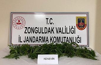 Zonguldak'ta uyuşturucu operasyonlarında 3 kişi...