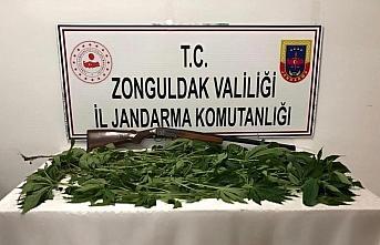 Zonguldak'ta uyuşturucu operasyonunda 2 kişi gözaltına...