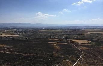 Amasya'daki yangında 25 dönüm ekili alan zarar...