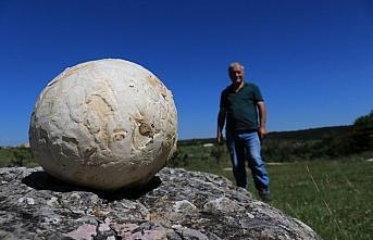 Futbol topu sandı, 5 kilogram ağırlığında mantar...
