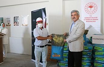 Samsun'da çiftçilere 6 ton silajlık mısır tohumu...