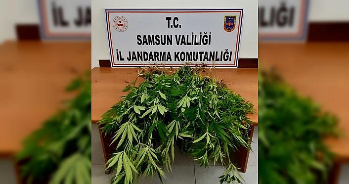 Samsun'da uyuşturucu operasyonlarında 12 şüpheli...