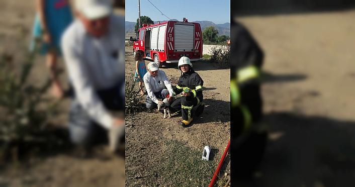 Tokat'ta kuyuya düşen kuzuyu itfaiye ekipleri kurtardı