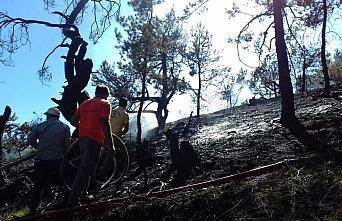 Amasya'daki orman yangını söndürüldü