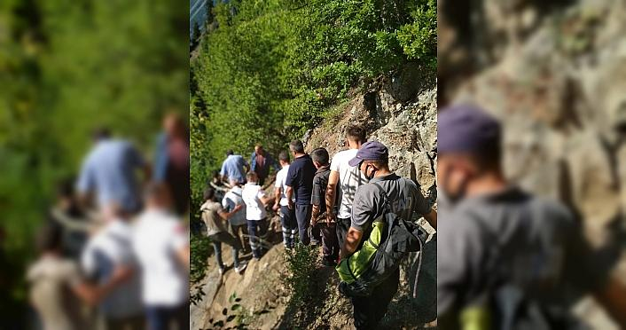 Artvin'de uçuruma düşen kadın hayatını kaybetti