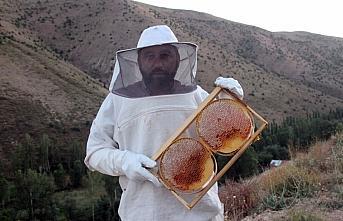 Bayburt'ta arıcıların bal sağım mesaisi başladı
