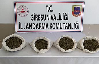 Giresun'da uyuşturcu operasyonunda 4 kişi gözaltına...