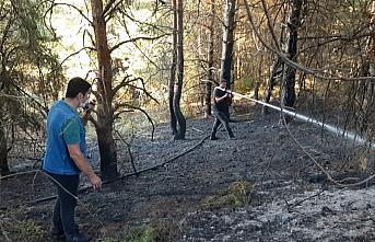 GÜNCELLEME - Kastamonu'da çıkan orman yangını...
