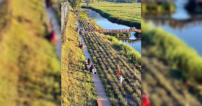 Kaz Gölü'nde bayram yoğunluğu
