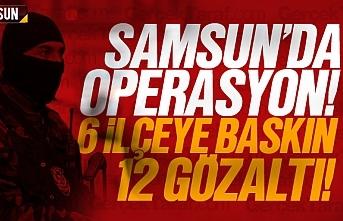 Samsun'da 6 ilçeye baskın, 12 gözaltı