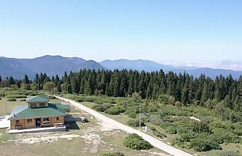 Ağaçbaşı Tabiat Parkı'nda turizm yatırımları devam ediyor