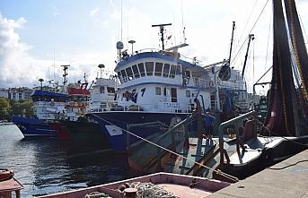 Batı Karadeniz'de balıkçılar poyraz nedeniyle...