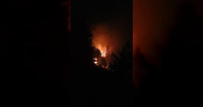 Bolu Aladağ Yaylası'nda çıkan orman yangını...