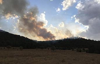 Bolu'da yıldırım düşmesi sonucu orman yangını çıktı