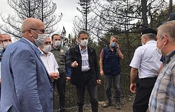 Çorum ve Sinop arasındaki ormanlık alanda çıkan...