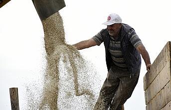 Gümüşhane'de 30 yıldır işlenmeyen araziler aspirle...