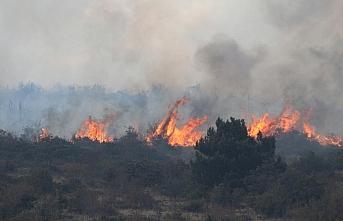 GÜNCELLEME - Bolu'da çıkan orman yangınına müdahale...