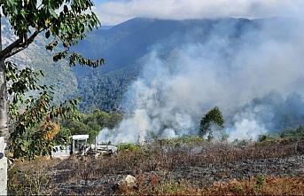 Kastamonu'da anız yangını ormanlık alana sıçramadan...