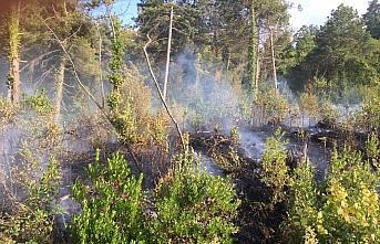 Kastamonu'da ormanlık alanda çıkan yangın büyümeden...