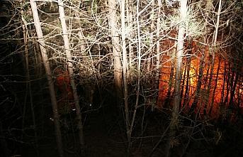 Kastamonu'da ormanlık alanda çıkan yangın kontrol...