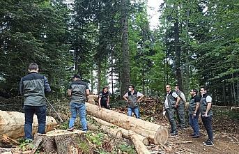 Orman Bölge Müdürü Beyazlı'dan Ulus'ta inceleme