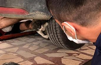 Panelvanın motor kısmına sıkışan kediyi itfaiye kurtardı
