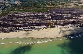 Samsun Kızılırmak Deltası bilerek mi yakıldı?