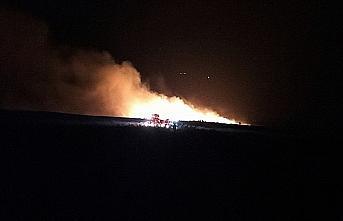 Sinop'ta çıkan orman yangını söndürüldü