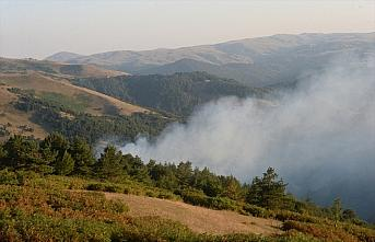 Tokat'ta çıkan orman yangınına müdahale ediliyor
