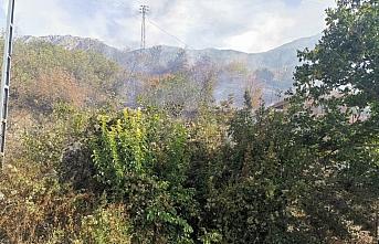 Amasya'da çıkan orman yangınında 3 hektar alan zarar gördü