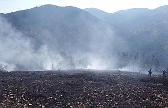Bolu'da ormanlık alanda çıkan yangın söndürüldü