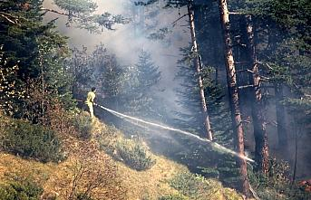 GÜNCELLEME 2 - Kastamonu'da çıkan orman yangınına müdahale ediliyor
