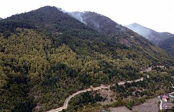 GÜNCELLEME - Karabük'te ormanlık alanda yeniden yangın çıktı