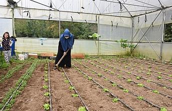 Kadın çiftçi serasında yetiştirdiği ürünlerle ekonomiye katkı sağlıyor