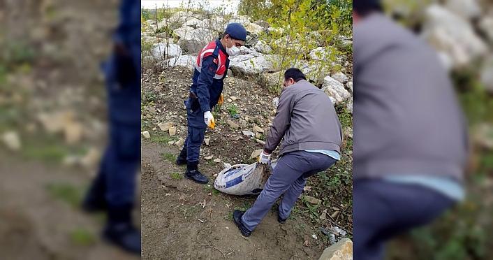 Karabük'te izinsiz salyangoz toplayan 5 kişi yakalandı
